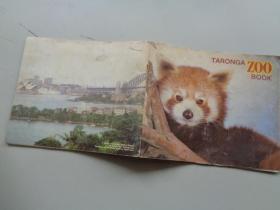 TARONGA ZOO BOOK