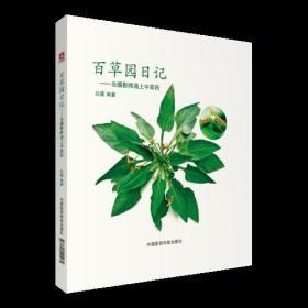 百草园日记——当摄影师遇上中草药