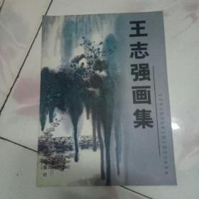 王志强画集[大16开2007一版一印 发行量:1000册]