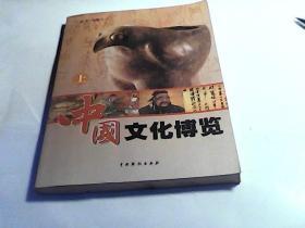 中国文化博览(上卷)