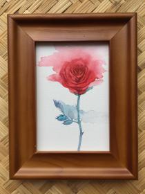 水彩画《红玫瑰》