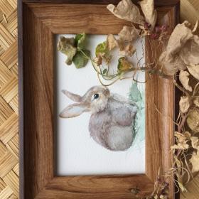 水彩画《灰兔》