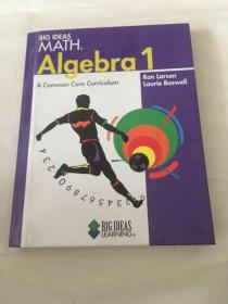BIG IDEAS  MATH    A Common Core Curriculum  ALGEBRA 1