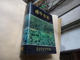 咸宁市志.