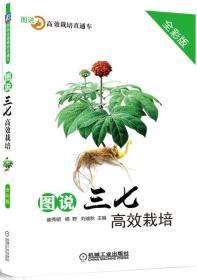 正版送书签qs~图说高效栽培直通车:图说三七高效栽培 97871115669