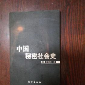 中国秘密社会史