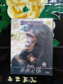 Discovery探索频道:非洲灵猿 VCD