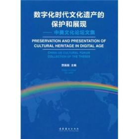 数字化时代文化遗产的保护和展现:中美文化论坛文集