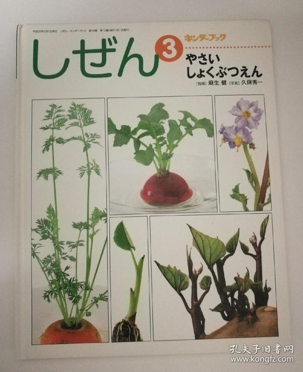 しぜん(キンダーブック)第3、5、6、8、10册合售(日文原版《自然(幼稚园图书(Kinder books))》第3、5、6、8、10册合售)