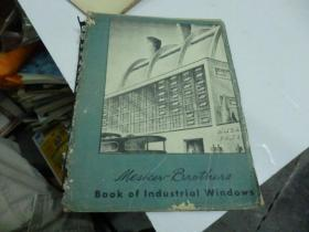 Book of lndustrial windows