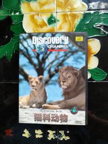 Discovery探索频道:猫科动物 VCD