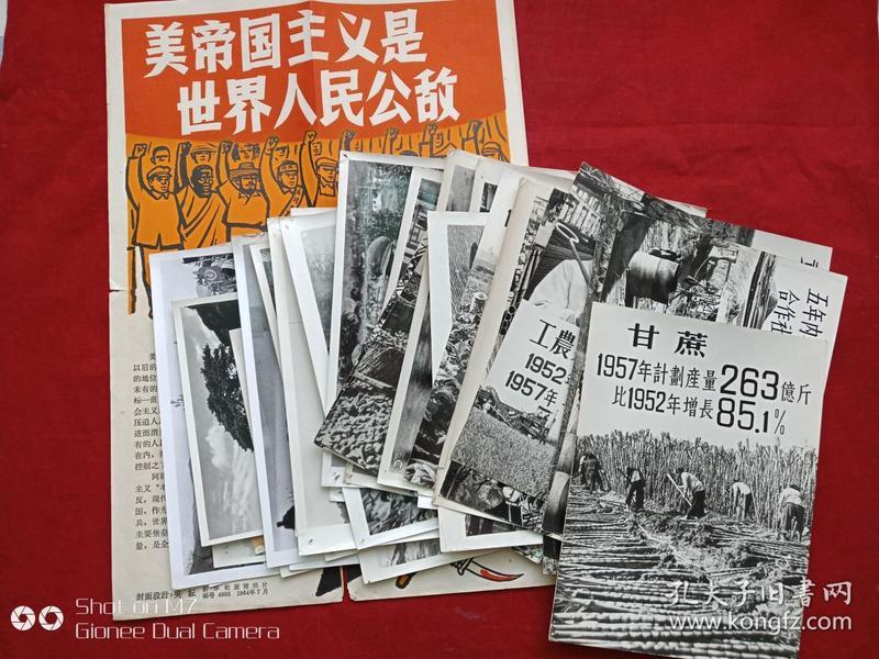 专业行业照8--六七十年代安徽大学图书馆藏新华社展览照片共33张和一张画报