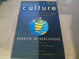The Skin of Culture: Investigating the New Electronic Reality(英文原版)
