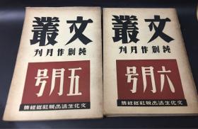 文丛纯创作月刋五月号六月号合售