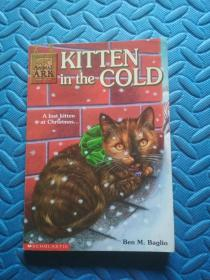 KITTEN IN THE COLD》 翻译:寒冷的小猫
