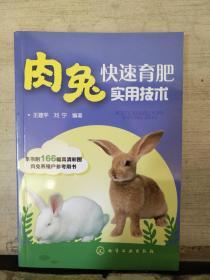 肉兔快速育肥实用技术