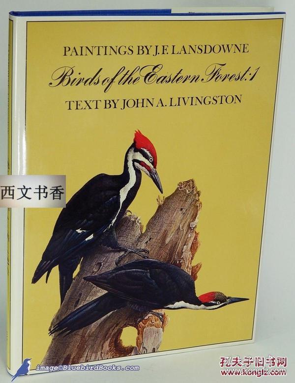 ?yf?x?~j?>?X_1968年,j. f. lansdown作品《东部林鸟》精美图片.精装8开33x25cm