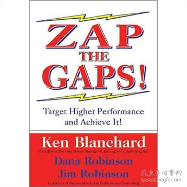 缩小差距!【Zap the gaps!】(英文原版)