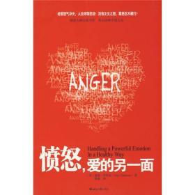 愤怒,爱的另一面(新版)
