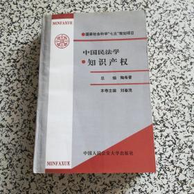 中国民法学.知识产权