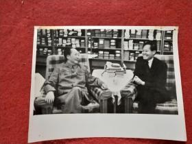 """新华社记者摄,毛主席照片:""""1973年7月17日,毛主席会见杨振宁博士""""(20X15厘米,背面有文字说明)"""