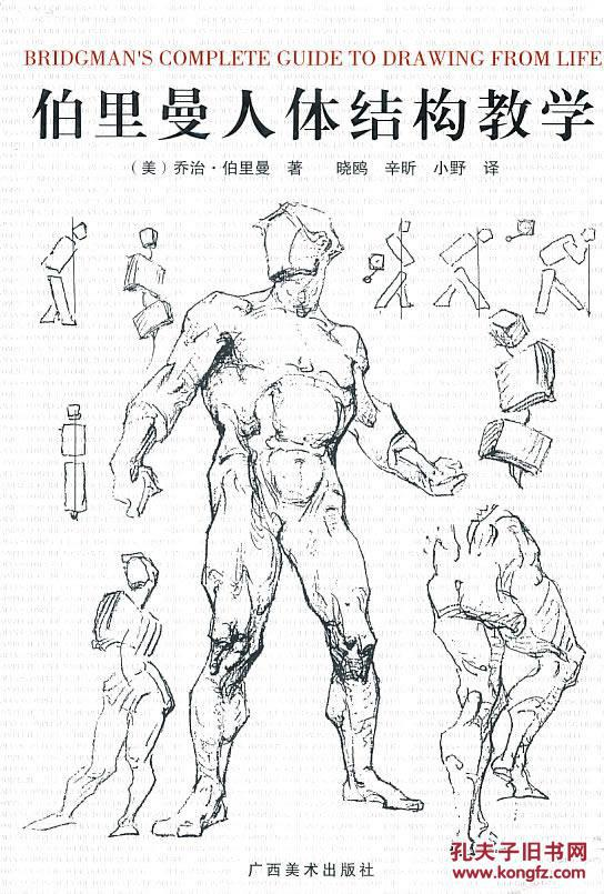 伯里曼肌肉_②手伯里曼人体结构教学 乔治伯里曼 广西美术出版社