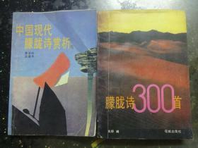 80年代末朦胧诗:《  中国现代朦胧诗赏析》《朦胧诗300首》2本合售