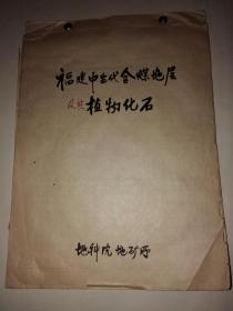 福建中生代含煤地层及其植物化石(手稿)