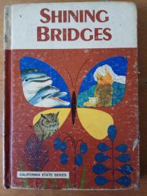 Shining Bridges