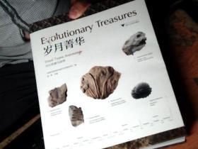 岁月菁华——化石档案与故事  护封破一块 如图        PP4