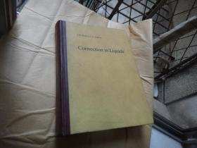 Convection in Liquids 液体的对流[英文]精装16开