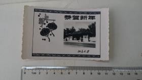 1961年北京大学西校门照片型新年年历片