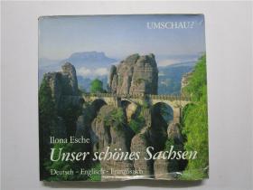 Ilona Esche UNSER SCHONES SACHSEN (我们美丽的萨克森洛娜灰)大12硬精装