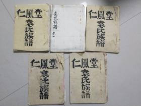 仁风堂 手写影印 袁氏族谱 卷首 卷一 卷一 卷二 卷三 共5册