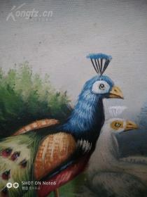 精美外框 带框发货 本店精品 纯手绘写实动物油画 《孔雀》 画功超好 精美外手绘油画,40*40,布面纯手绘,