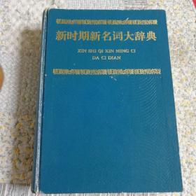 新时期新名词大辞典