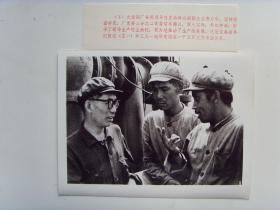 老照片:【※1973年,大连钢厂--党委副书记张迈※】