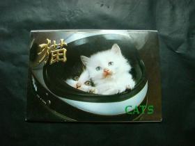 猫(明信片十枚全)1987年