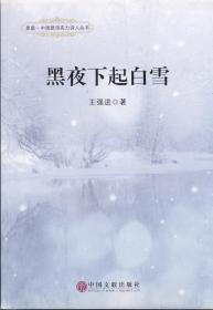 黑夜下起白雪——星星.中国新诗实力诗人丛书