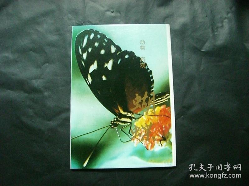 明信片---动物奇观 蝴蝶 10张全