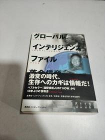 グローバル インテリヅエンスファイル(日文)