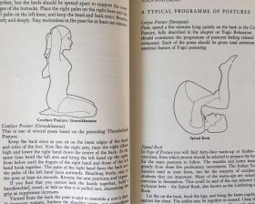 The Complete Yoga Book: Yoga of Breathing; Yoga of Posture; Yoga of Meditation【瑜伽全书,詹姆斯休伊特,英文原版】