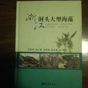 浙江洞头大型海藻
