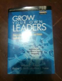 英文原版---Grow Your Own Leaders: How to Identify, Develop, and Retain Leadership Talent