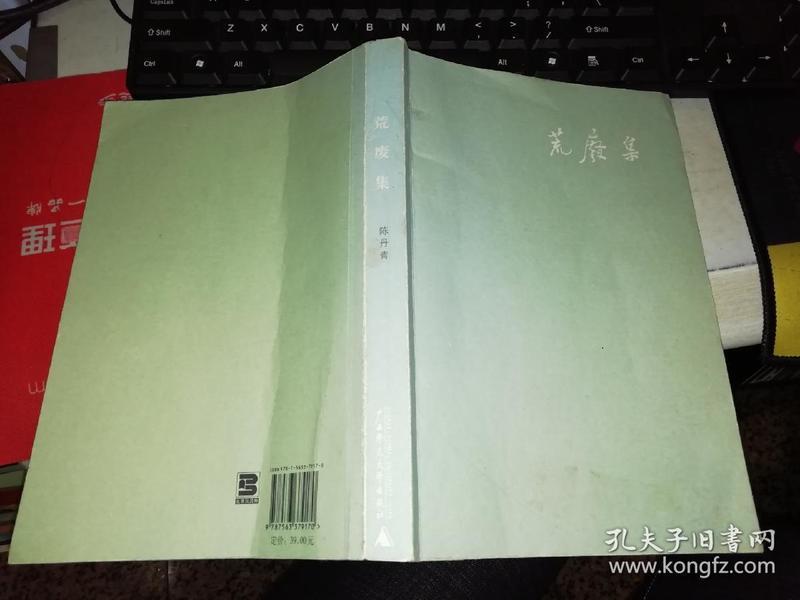荒废集 9787563379170作者 : 陈丹青出版社 : 广西师范大学出版社【381页】