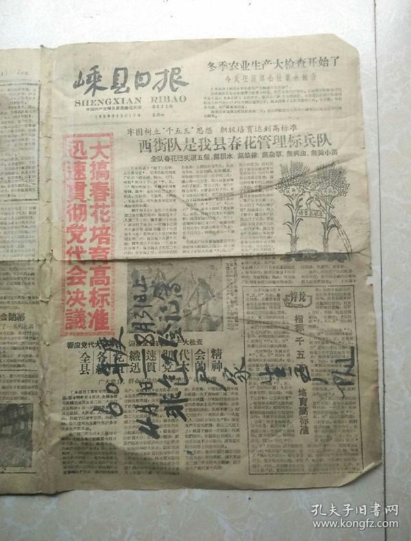 1959年12月17日《嵊县日报》残缺