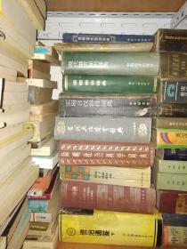 汉语新词词典