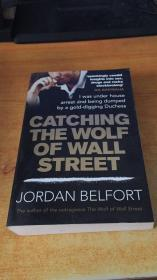 CATCHING THE WOLF OF WALL STREET(原版英文)