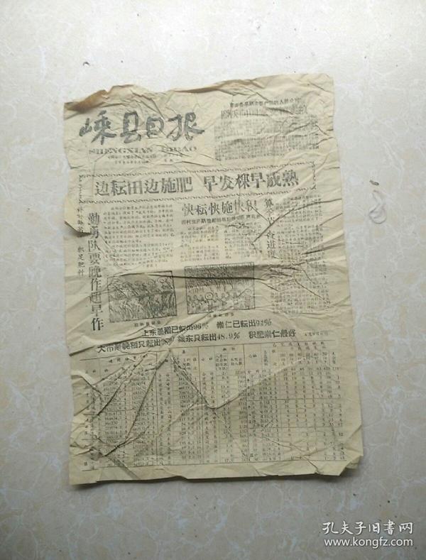 1959年8月10日《嵊县日报》残缺