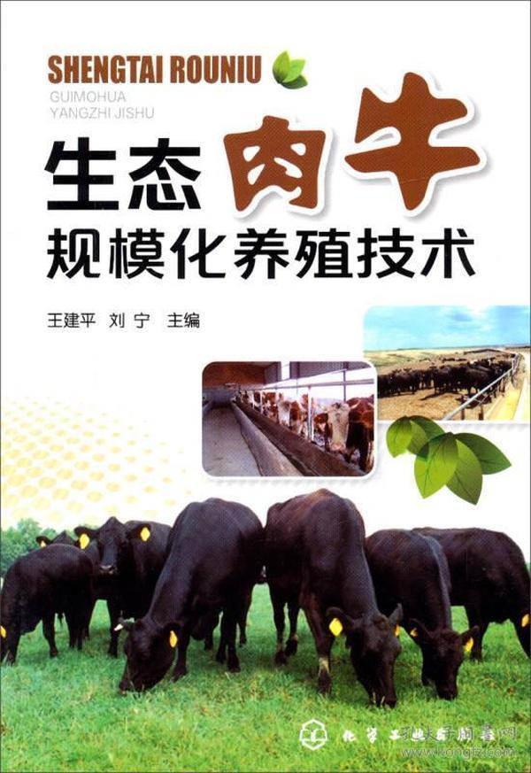 9787122205551生态肉牛规模化养殖技术